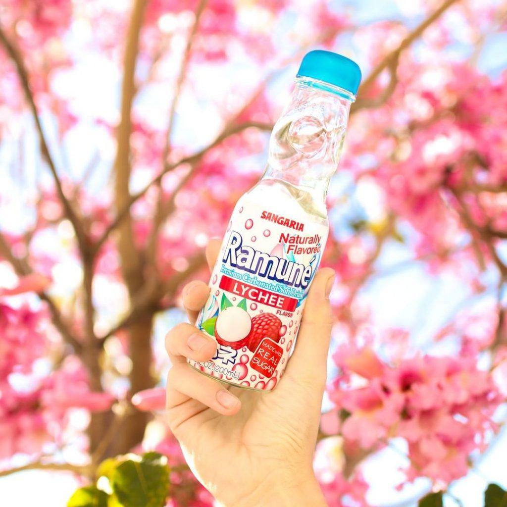 Minuman-Minuman Terenak Yang Khas Dari Jepang